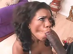 Ebony plump woman fucking like never before